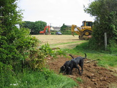 Earth moving machines in St Mellion fields